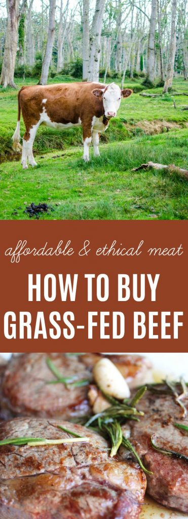 How to Buy Grass-fed Beef | Learn how to buy inexpensive, quality meat that is raised ethically & sustainably. | thenourishedfamily.com