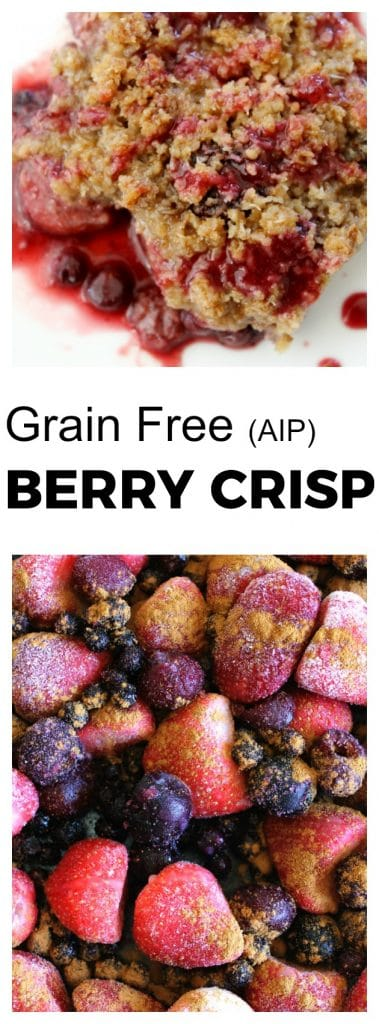 Grain Free Berry Crisp (AIP) | thenourishedfamily.com
