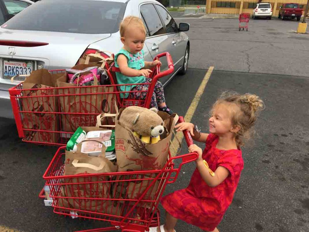 How To Buy Food in Bulk   Save yourself time & money with these tips   thenourishedfamily.com