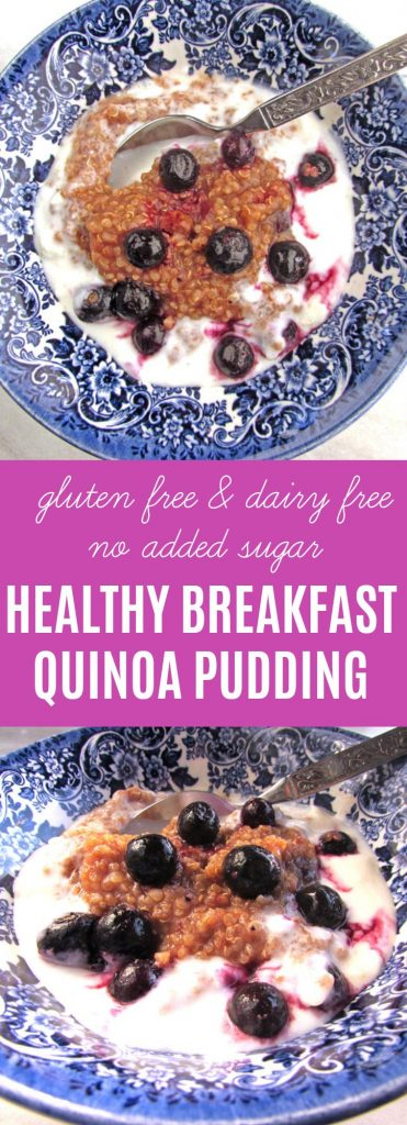 Healthy Breakfast Quinoa Pudding | Gluten free, no sugar added, and loaded with protein. This cereal is easy to make and an excellent way to start your day. | thenourishedfamily.com