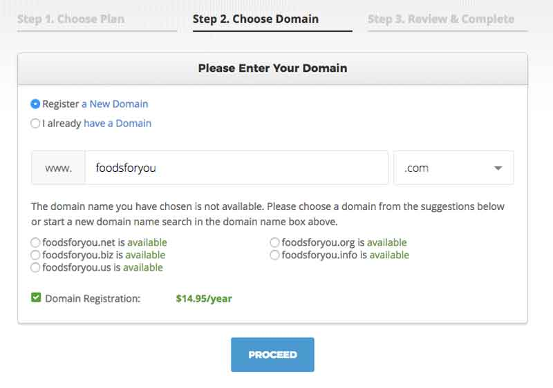 Choosing a Domain Name-2