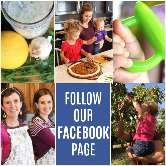 Follow us on Facebook! | thenourishedfamily.com